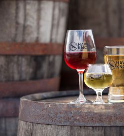 Hand-Crafted Cider & Mead Glasses